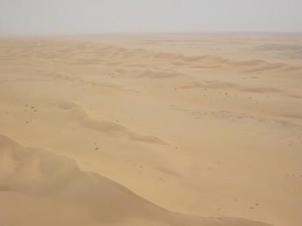 Dünenfeld in Nord-Mauretanien: Langeweile bis zum Horizont, jedoch ein spannendes Puzzle in den globalen Zusammenhängen.  Foto: Kerstin Schepanski/TROPOS