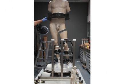 Por fim, as outras partes foram unidas com uma cola também inovadora. Para esta parte da tarefa, os restauradores desenvolveram uma armadura especial.