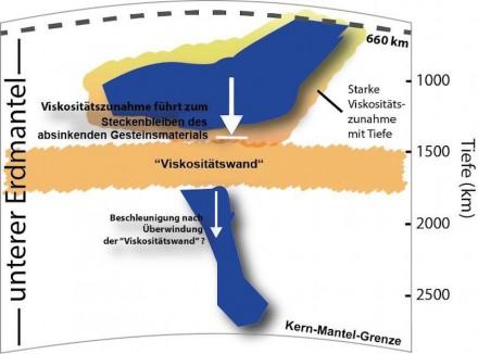 """Die Grafik zeigt, wie sich Gesteinsmaterial oberhalb der hochviskosen Schicht anstaut. Falls es aber diese """"Wand"""" durchdrungen hat, dürfte sich sein Absinken in die Tiefe beschleunigen. Grafik: Dr. Hauke Marquardt, Bayerisches Geoinstitut, Universität Bayreuth"""