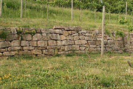 Dry Stone walling is an important topic in today's gardening and landscaping. Photo: Peter Becker