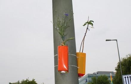 Milchtüten als Blumenkübel am Lichtmast - manche Pflanzideen in Städten sind wirklich innovativ. Foto: Peter Becker