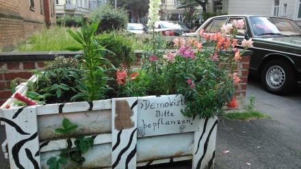 Blumenkiste - am Anfang vieler Projekte steht die Improvisation. Foto: BBSR / Schlag
