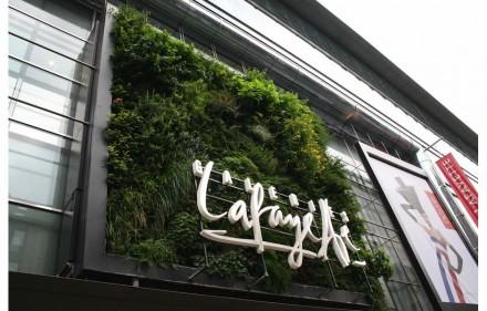 Das Nobelkaufhaus Galeries Lafayette hat seit einigen Jahren seine Fassade in der Berliner Friedrichstraße mit echten Pflanzen geschmückt. Foto: Peter Becker