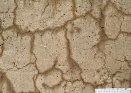 Hässlich und zerstörerisch: Nahaufnahme von Rissen in Beton, die aufgrund der Alkali-Aggregat-Reaktion (AAR) entstanden sind. Foto: Empa / Andreas Leemann
