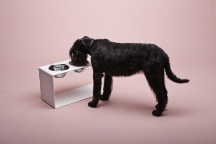 """... y """"Greedy pivot"""" (Pivote para codiciosos) es un comedero para perros de tamaño XXL."""