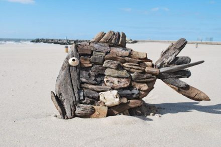 Marcel Dijker: Arte a partir de despojos del mar.