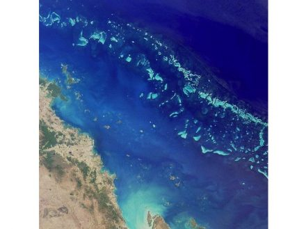 Satellite photo of a section of the Great Barrier Reef east of the Australian city of Mackay, Queensland. In total the reef stretches over a length of 2300 km. Source: Nasa / Wikimedia Commons