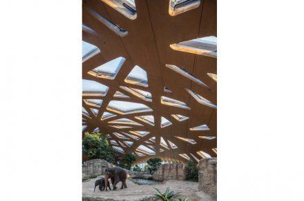 Elefantenhaus Zoo Zürich von Markus Schietsch Architekten.  Foto Andreas Buschmann