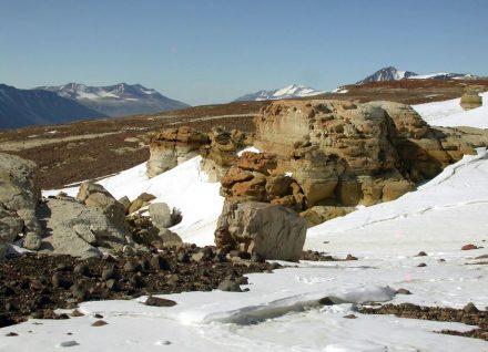 Verwitternder Beacon Sandstein in den Trockentälern der Antarktis in 1250 m Höhe. Unter dessen Oberfläche, zum Beispiel, lebt die Blaugrüne Felskugel in eisiger Kälte. Foto: Burkhard Büdel, TU Kaiserslautern