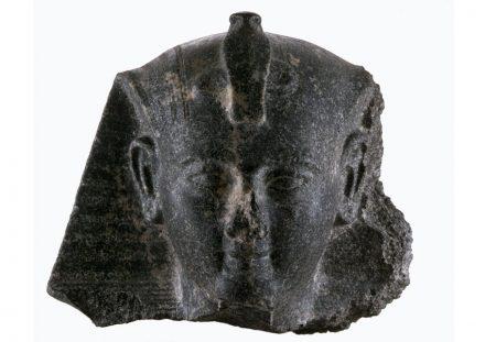 Kopf einer frühen Statue Ramses II. Regierungszeit Ramses II. (1279–1213 v. Chr.), Theben (?), Granodiorit. © Hildesheim, Roemer- und Pelizaeus-Museum,  Foto: Sh. Shalchi