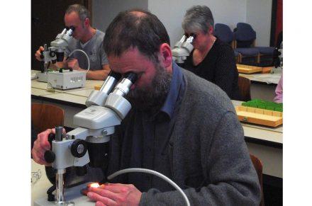 Gesteinsbestimmung mit dem Mikroskop war eines der Themen im Kurs.