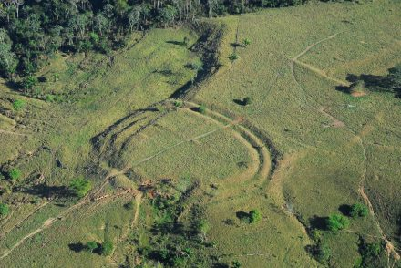 Geoglyphs in the Amazonian rain forest made visible by deforestation. Photo: Jennifer Watling