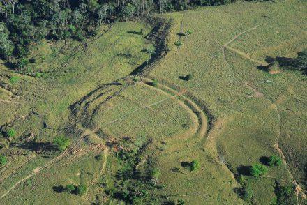 Geoglyphen im Amazonas-Regenwald, die durch Abholzung sichtbar geworden sind. Foto: Jennifer Watling