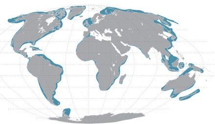 Global distribution of sandy sediments (shown in blue). Graphik: Soeren Ahmerkamp, Max Planck Institute of Marine Microbiology.