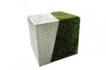 """Glaßer und Dagenbach: """"Stone Plant Sculpture""""."""