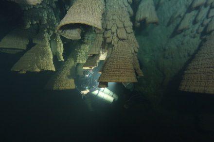 Die Hells Bells-Tropfsteine in der El Zapote-Höhle bei Puerto Morelos auf der Yukatan-Halbinsel.