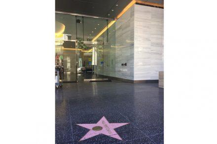 Category ,Blanco Macael' Award: Vine Street Building, Los Angeles, USA.