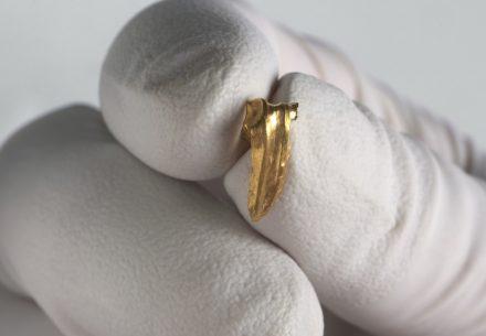 Gold fragment.