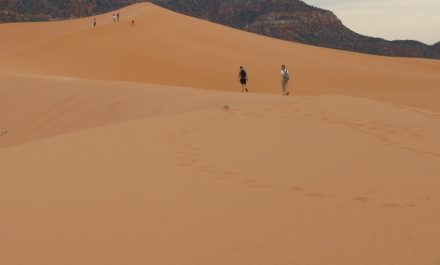 Sand is available in abundance, still it seems to be running low as we are consuming too much of it.