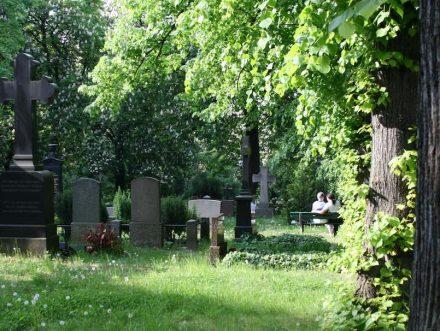 Friedhöfe sind Lebensräume für Tiere und Pflanzen und auch ein Ort für den Mensch.