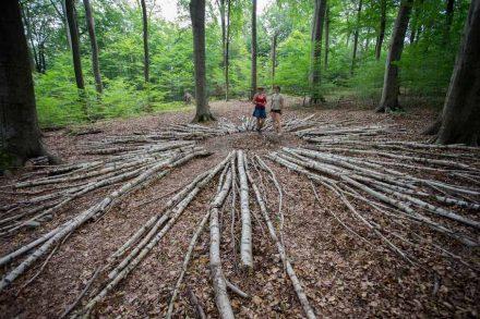 """Internationaler Waldkunstpfad 2018, Bianca Bischer & Stefanie Welk: """"Wald Weites Web""""."""