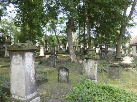 Der Eliasfriedhof in Dresden. Foto: Schalinski/DSD