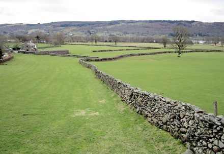 "Drystone walls shape the meadows. Photo: Chris McAuley / <a href=""https://commons.wikimedia.org/""target=""_blank"">Wikimedia Commons</a>"
