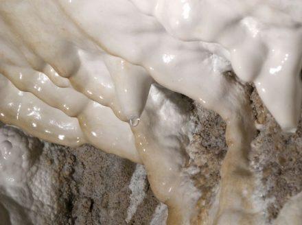 Aragonit-Vorkommen in der Obstanser Eishöhle in Tirol: Die Oberfläche der weißen Schicht an der Höhlenwand ist mit dem neu entdeckten mAra, der Vorstufe des Aragonits, bedeckt. Foto: Christoph Spötl