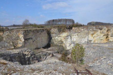 Blick in den stillgelegten Steinbruch in Mühlheim (Landkreis Eichstätt, um den es in dem Projekt geht.