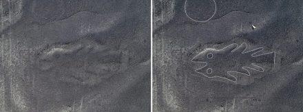 Fisch: Rechts: Bild nach Bearbeitung.