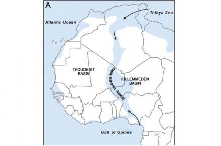 Das heutige West-Afrika vor 50 bis 100 Millionen Jahren.