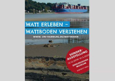 """Poster der Ausstellung """"Watt erleben – Wattboden verstehen"""" im Zoologischen Museum Hamburg."""