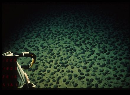 """Field of type C polymetallic nodules in the North Equatorial Pacific, photo taken from the submarine Nautile during the Nodinaut campaign–Ifremer. Photo: Philweb / <a href=""""https://commons.wikimedia.org/""""target=""""_blank"""">Wikimedia Commons</a>"""