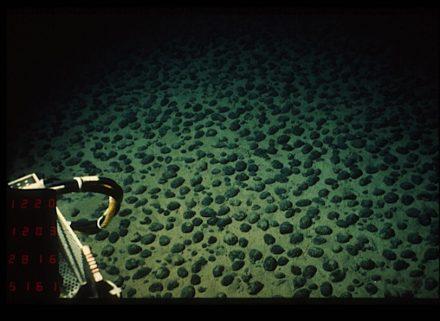 """Feld mit polymetallischen Knollen des Typs C im Pazifik, Aufnahme des U-Boots Nautilus im Rahmen der Kampagne Nodinaut-Ifremer. Foto: Philweb / <a href=""""https://commons.wikimedia.org/""""target=""""_blank"""">Wikimedia Commons</a>"""