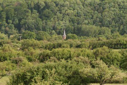 Wohin mit den Kirchen, die nicht mehr als Gotteshäuser gebraucht werden?