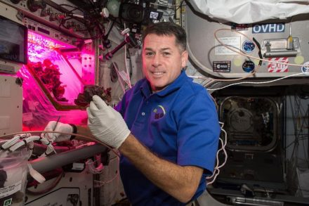 "Astronaut Shane Kimbrough in front of the ""Veggie"" chamber on the ISS. Photo: Nasa"