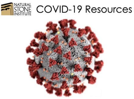 "Illustration of the coronavirus in huge magnification. Source: Centers for Disease Control and Prevention (CDC) / <a href=""https://commons.wikimedia.org""target=""_blank"">Wikimedia Commons</a>"