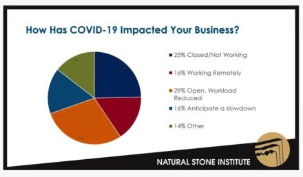 Excerpt from the survey among NSI members on the impact of Covid-19. The study will be published shortly.
