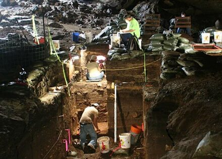 Workers excavating Hall's Cave in Central Texas. Courtesy of Michael Waters