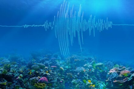 An artist's rendering of undersea earthquake waves. Source: Caltech