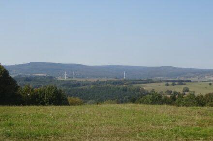 Vogelsberg: Der Oberwald von Südosten. Foto: GeoUnion
