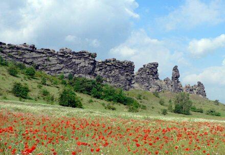 Unser Foto zeigt die Teufelsmauer im Harz, die, so sagen die alten Geschichten, bei Nacht und Nebel von dem Bösen errichtet wurde. Moderne Geologen wollen es, wie immer, besser wissen und behaupten, dass vor 55 Millionen Jahren in der Gegend einfach nur Gesteinsschichten von tektonischen Kräften gekippt und hochgestellt wurden. Foto: Dr. Klaus George / Regionalverband Harz