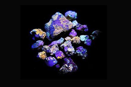 Die Flechten auf den Quarzsteinchen leuchten in unterschiedlichen Farben unter UV Licht. Foto: Hochschule Kaiserslautern