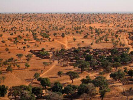Dryland landscape in West Africa.