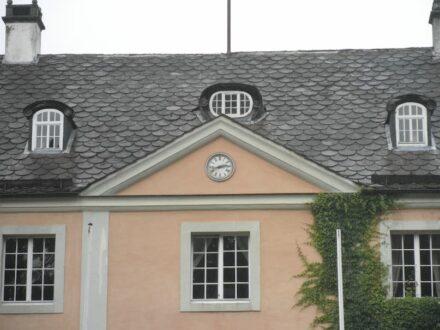 Das Dach von Schloss Rheder in Brakel.