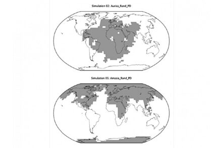 How land could be distributed in the Aurica supercontinent (top) versus Amasia. The future land configurations are shown in gray, with modern-day outlines of the continents for comparison. Credit: Way et al. 2020