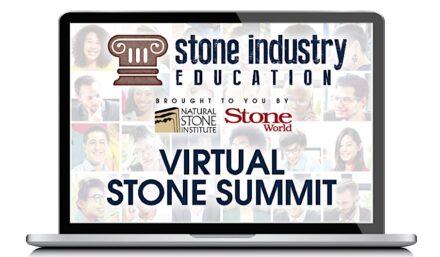 Logo of the NSI's Virtual Stone Summits.