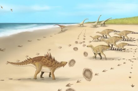 A palaeoartist's impression of the dinosaurs and their footprints. Credit: Megan Jacobs, University of Portsmouth