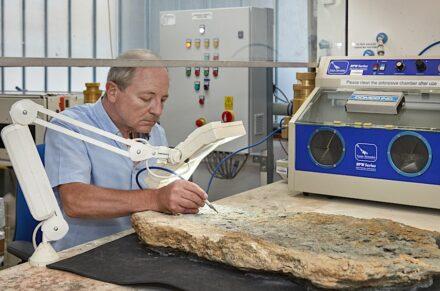 Fossil preparation at the NHM.