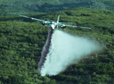 An airplane spraying a forest (colors have been changed). Photo: Thomas Hays